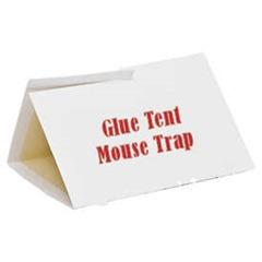 Glue Tent