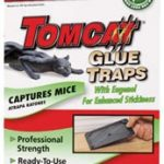 The Top 3 Rat & Mouse Glue Traps