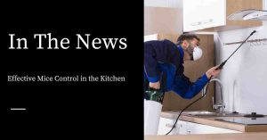 Kitchen Mouse Control