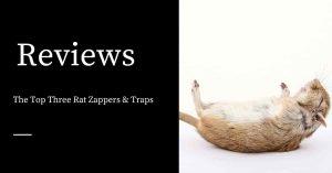 Rat Zappers
